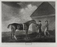 George Stubbs ARA 1724-1806