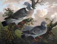 Philip Reinagle RA 1749-1833